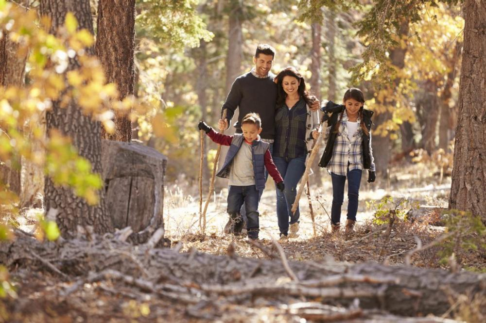 Family hiking in woods | Dentist Broomfield CO